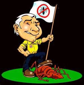 An Argument for Natural Pest of Bug Management